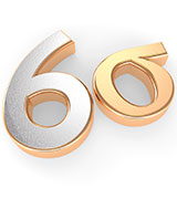Lean and Six Sigma Professional Programs